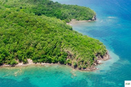 Martinique Belle île